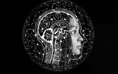 Über die Wirkkraft Psychometrischer Analyseverfahren im Coaching
